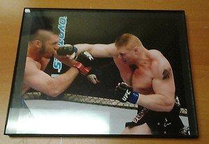 BROCK LESNAR blasts Heath Herring at UFC 87 framed 8x10 photo WWE