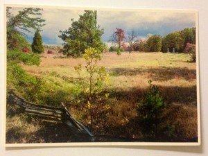 NEW UNUSED post card Fredericksburg and Spotsylvania Bloody Angle Civil War