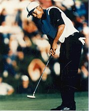 TIGER WOODS PGA Golf 8x10 photo 2