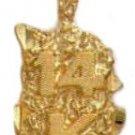 """""""14 K"""" Gold Nugget Pendant NG-11"""