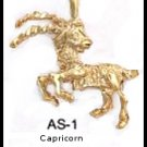CAPRICORN, December 21 to January 20  Astrology   Pendant AS-1