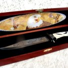 Fixed Blade Eagle Knife in Wood Box Display NEW