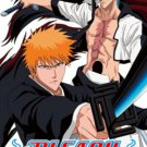 Bleach: Heat the Soul 5 [Japan Import]