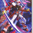 Bandai /100 MG Gundam Astray Red Frame Lowe Guele's Customize Mobile Suit MBF-PO2KAI