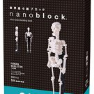 Nano block human body skeleton NBM-014