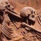 Desert Days: My Life as a Field Archaeologist