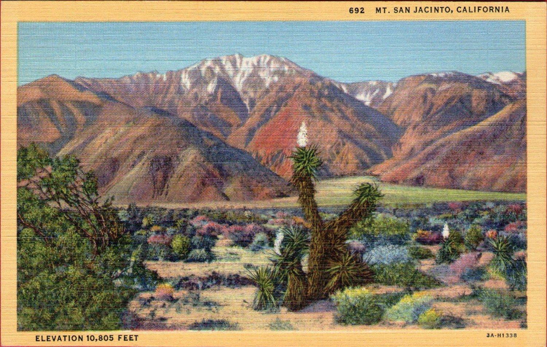 "Scenic- C.T. Art ""Mt. Jan Jacinto, California"" Linen Postcard"