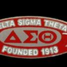 Delta Sigma Theta Sorority Silver Chain Necklace Divine 9 Sorority Necklace  #1