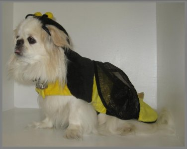 Pooch-a-lini� Bumble Bee Costume
