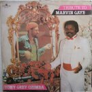 TONY GREY OZIMBA tribute to marvin gaye AFRO ELECTRO MODERN SOUL LP ♬ mp3 listen