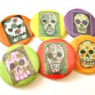 Set of 6 Day of the Dead Magnets or Mirrors Sugar Skull