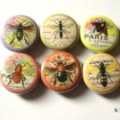 "Bees Bugs Insects 1"" Pins Badges or Magnets Set of 6"