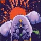 1993 - Image - The Maxx - #1 Issue - First Printing - Comic Books