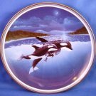 "1992 - Sea World - Killer Whale - Orcinus Orea - 8"" Collector Plate"