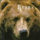 Bears Natures Window Shelia Buff 1st Edition HB Book