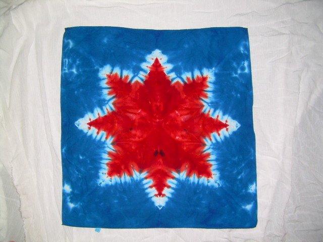 Tie Dye Bandanna #2