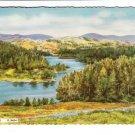 Tarn Hows Cumbria Lake District Postcard. Mauritron 248411