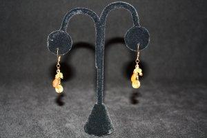 Carnelian, Peridot an Citrine Earrings - DMD0416