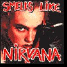 Smells Like Nirvana: A Tribute To Nirvana (2000) - CD