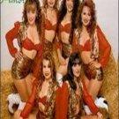 BANDA MITOTERA - Salud, Dinero Y Amor (1994) - Cassette Tape