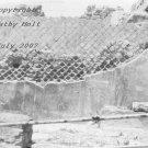 Pompeii in Black & White #3