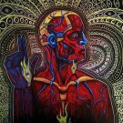 "ALEX GREY TOOL TRIBUTE 31"" ART POSTER"