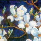 4 White Dogwood Greeting Cards with Envelopes