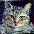 Grey Tabby Cat Art Tile/Coaster Set