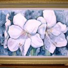 White Amaryllis- framed- Huge 24 x 36 inches