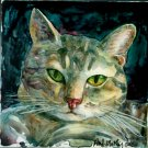 Grey Tabby Cat  on Yupo- Reproduction/ Print