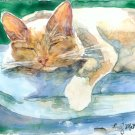 Cat Nap- yupo reproduction print
