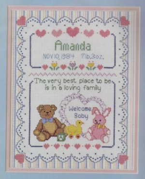 Dimensions Counted Cross Stitch Kit ~ Loving Family Birth Recod