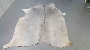 Cow hide Rug Grey Cow Hide Rug Brazilian Cow Skin Leather 915