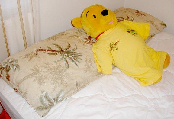 pillow- extra long