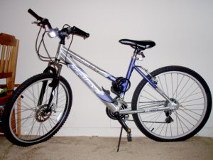 21-speed mountain bike (adult female)