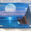 Airbrushed metal license plate-Sailboat