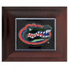 Florida Gators small jewelery Box