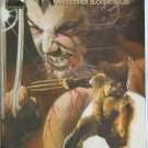 Wolverine The Amazing Immortal Man And Other Bloody Tales #1 One-Shot