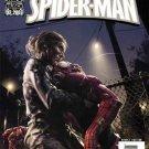 The Sensational Spider-Man #33 Spider-Man Unmasked