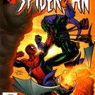 Marvel Knights Spider-Man #12 Mark Millar
