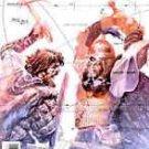 Northlanders The Viking Art Of Single Combat #17 Brian Wood