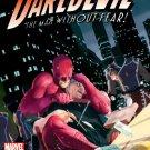 Daredevil #501