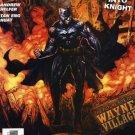 Batman Journey Into Knight #8