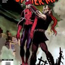 The Amazing Spider-man #585