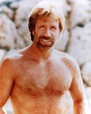 """Chuck Norris """"Facts"""""""