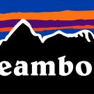 Steamboat Sticker Decal Colorado Springs Mountain Ski Snowboard Mountain Vail PO