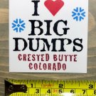 Crested Butte Sticker Decal Mountain Ski Resort I Love Big Dumps Colorado PO