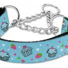 """Med 10"""" - 18"""" Baby Blue  Cupcakes Adjustable Nylon Safety Dog Collar with FREE SHIPPING"""
