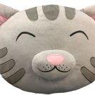 Big Bang Theory Soft Kitty Pillow
