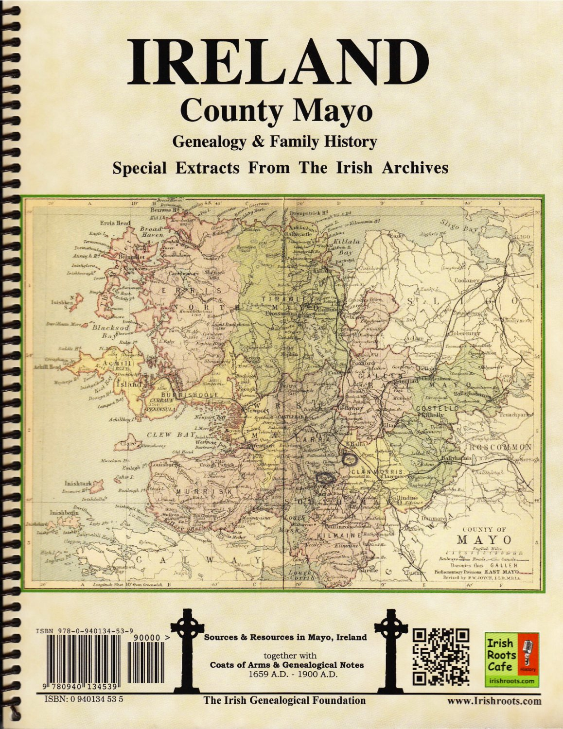 history of special needs ireland Legislation relating to the inclusion of children with special educational needs in special educational needs – history and (government of ireland.